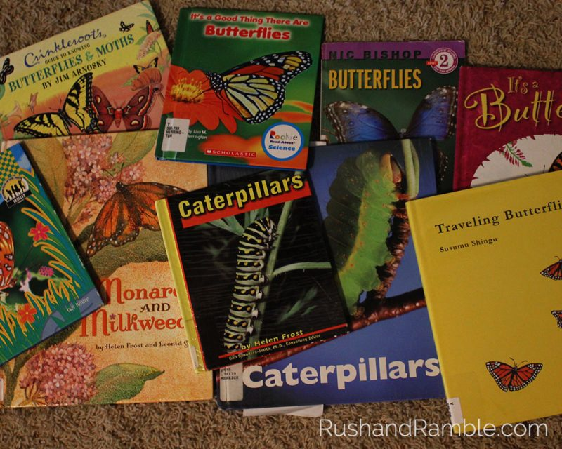 Butterfly Books   Milkweed, Monarchs and Masterpieces: The Tale of a Preschooler and His Butterfly Garden